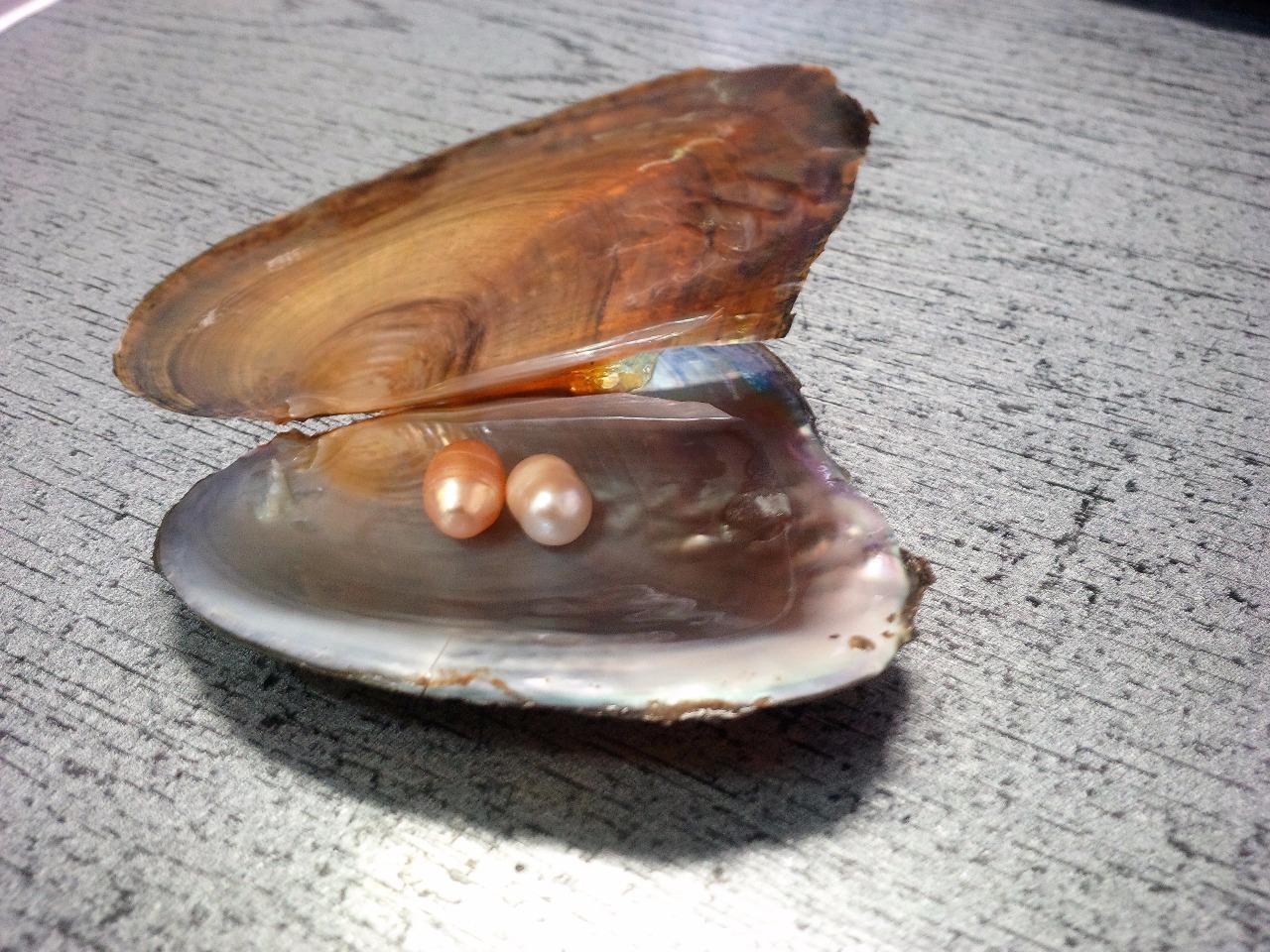 Perla ŠTĚSTÍ ( 7-8 mm velká b50e95b218